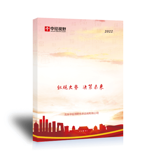 中国ERP企业发展战略研究报告